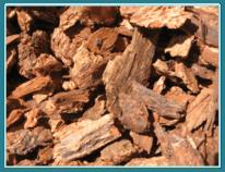 Medium Bark - Miller's Landscaping Products