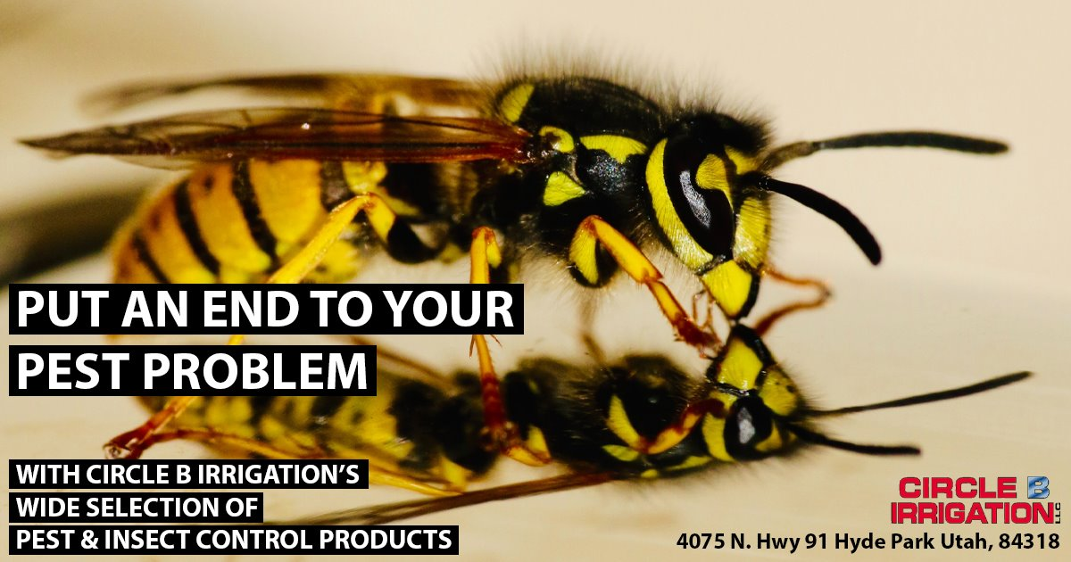 Current Deal - Pest control products are in stock!